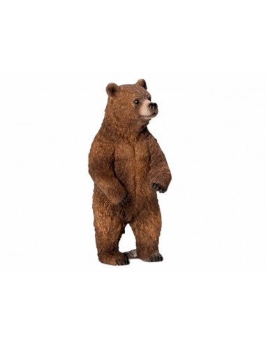FIGURA OSA GRIZZLY