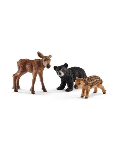 CRíAS DE ANIMALES DEL BOSQUE